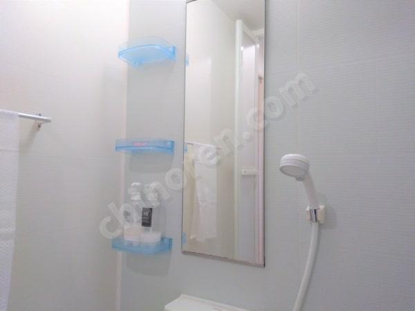 シャワーとミラー